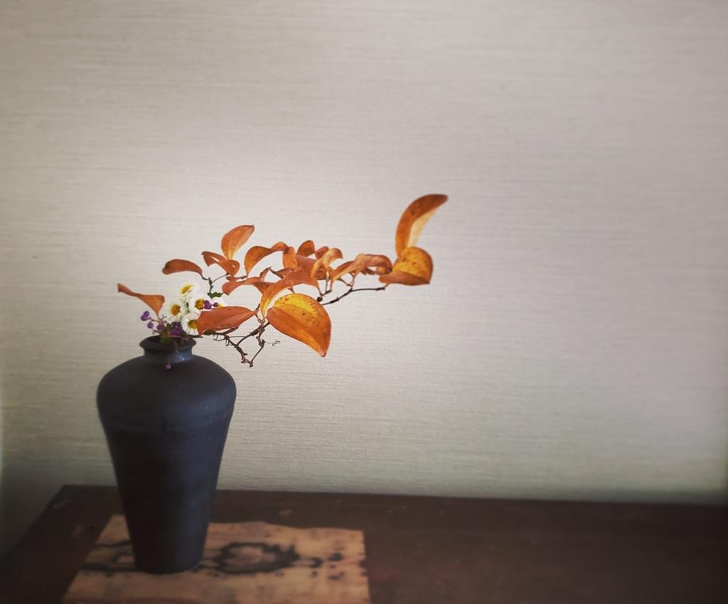 秋の花[6936]