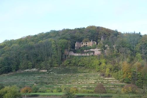対岸の古城