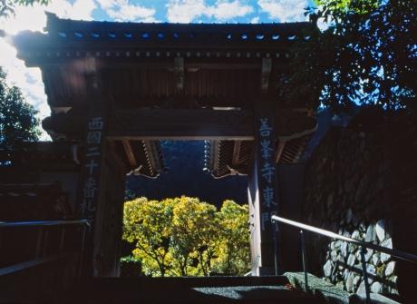 yoshimine_1.jpg