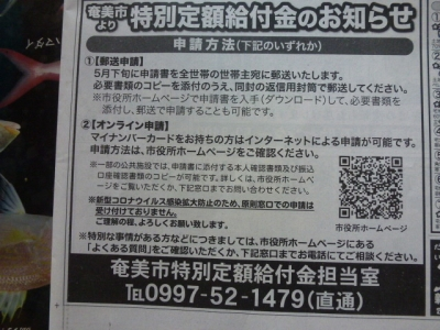 P1020531.jpg