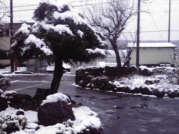 新年度直前の雪