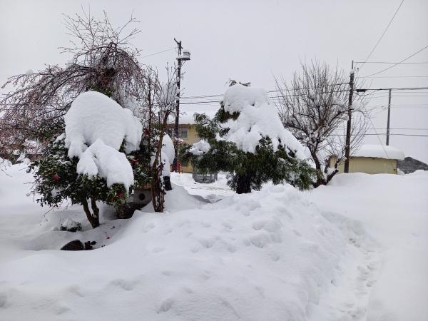 2020年12月16日の雪2