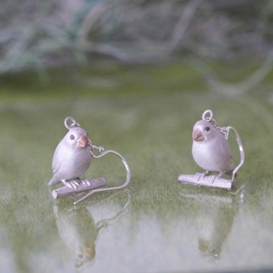幸せを運ぶ文鳥