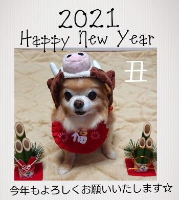 2021010101.jpg