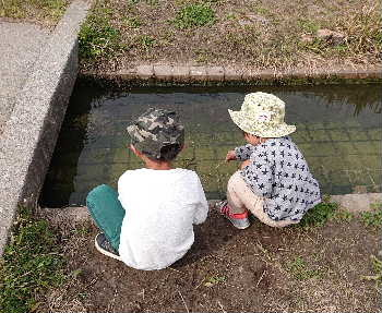 blog2020032604.jpg