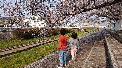 blog2020040801.jpg