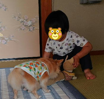 blog2020051707.jpg