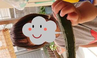 blog2020052704.jpg