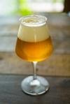飲み物-チューリップグラスのビール