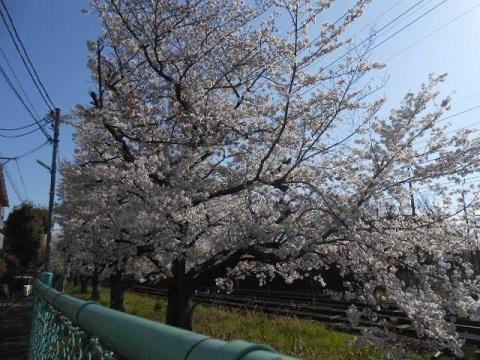 hk-nishimukou-3.jpg