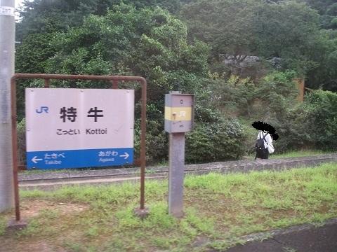jrw-kottoi-1.jpg