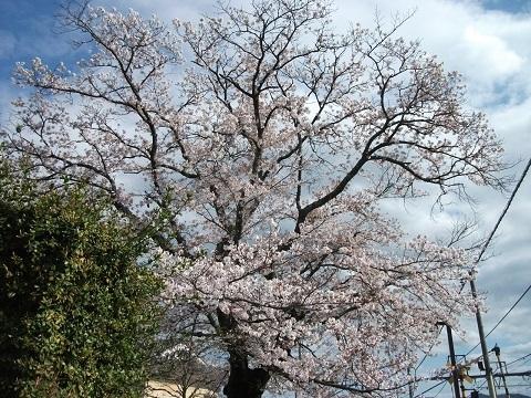 jrw-namikawa-8.jpg