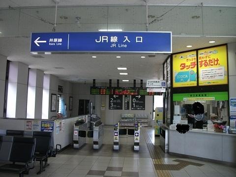 jrw-soja-3.jpg
