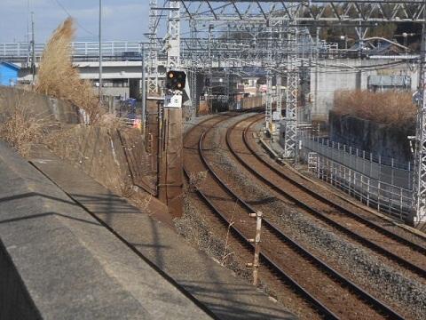 kh-hashimoto-2.jpg