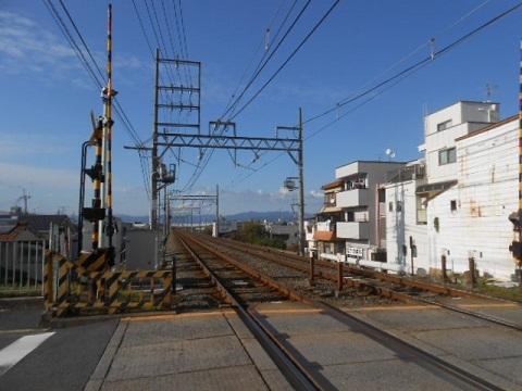 kh-kawachimori-3.jpg