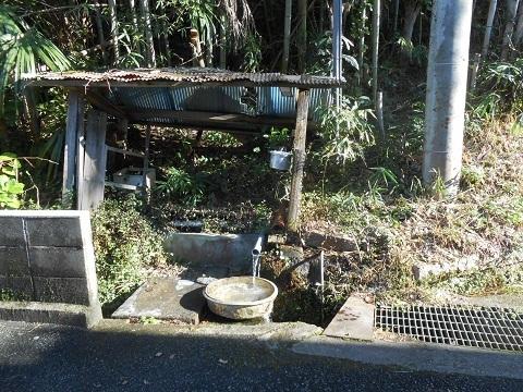 kh-kawachimori-4.jpg