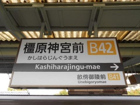 kt-kashiharajingu-2.jpg