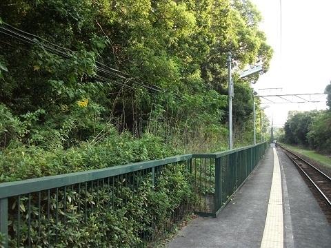 mt-mihamaryokuen-5.jpg