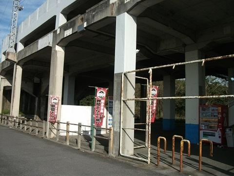mt-noma-6.jpg