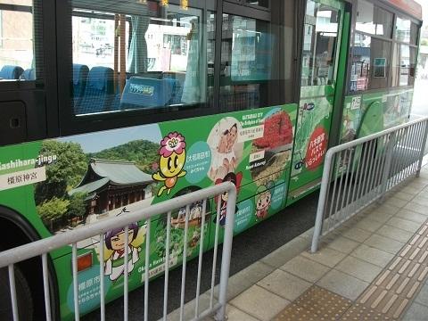 oth-bus-132.jpg