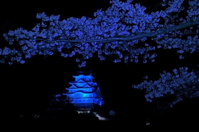 200402姫路城1_1