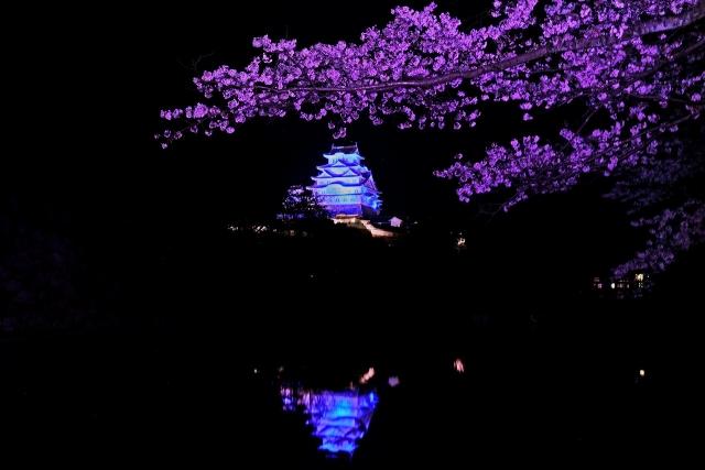 200402姫路城2_2