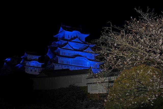 200402姫路城5
