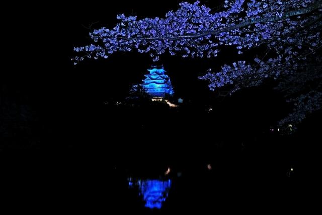 200402姫路城2_1