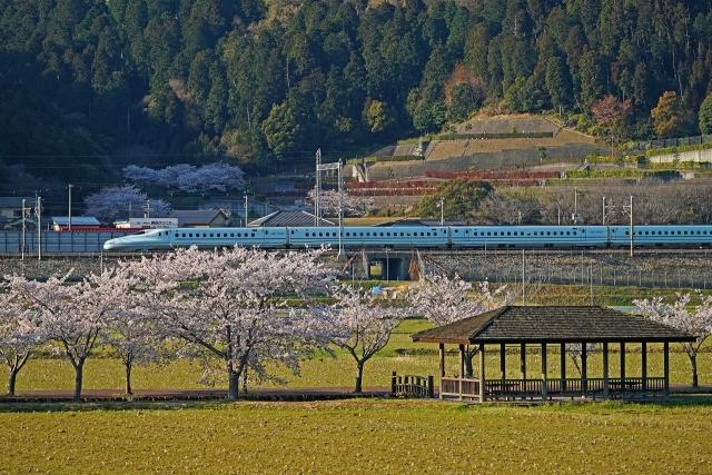 200406新幹線8