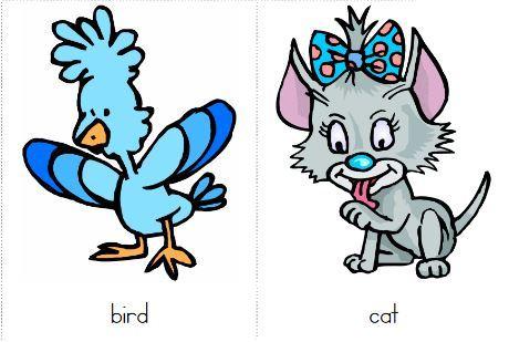 無料英語フラッシュカードflashcards animals