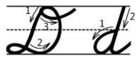 アルファベットD筆記体書き方書き順 cursive alphabetD