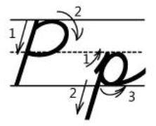 アルファベットPp筆記体書き方書き順 cursive alphabetP