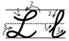 アルファベットLl筆記体書き方書き順cursive alphabetL