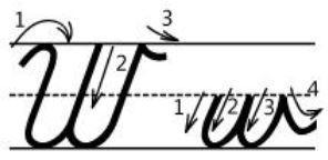 アルファベットWw筆記体書き方書き順cursive alphabetW