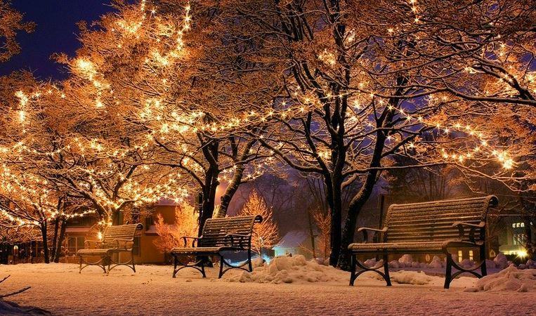 Bank Christmas Light