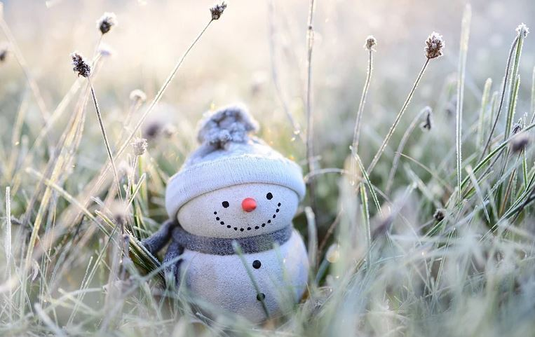 Snowman Winter Grasses