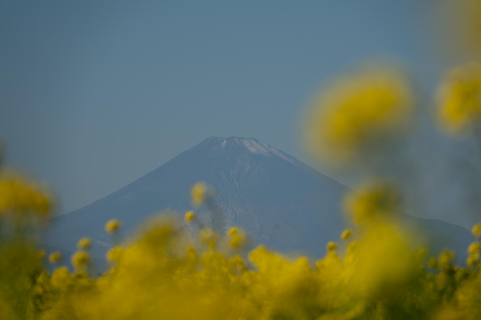 20201223-富士山