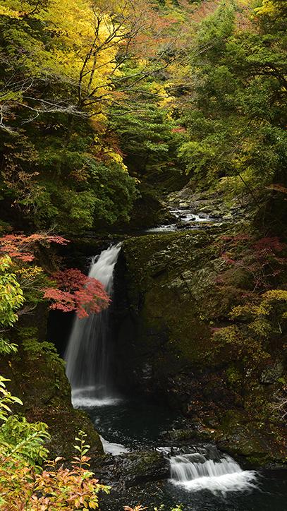 DSC6173_大滝