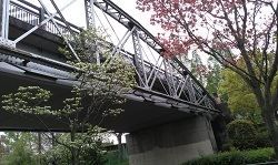 2020_04_22_緑地西橋_1