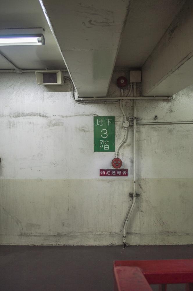 DSC_0369t.jpg