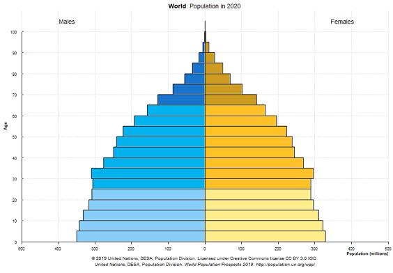人口ピら2020_20201203