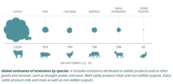 家畜別GHG排出量_20201211