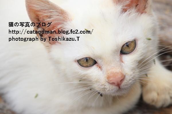 IMG_79430s.jpg