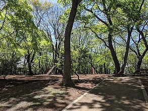 公園IMG_20200423_104001