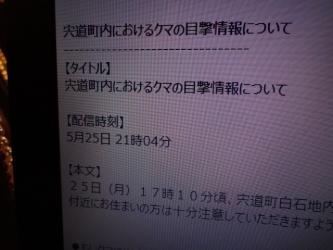 DSC08651.jpg