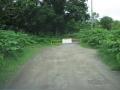 200802IMG_7715林道ゲート