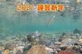 2021new_year.jpg