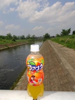 斉藤飛鳥 (1)