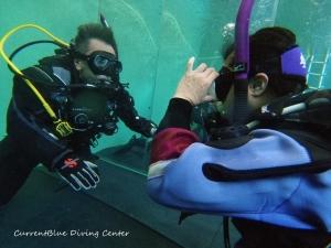 ダイビングインストラクターを目指す,PADIインストラクター試験,自社プールでダイビング練習 (3)