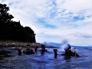 200922大瀬崎ダイビング (66)